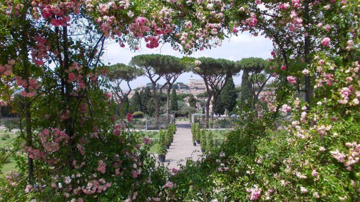 Riapre il roseto comunale di Roma