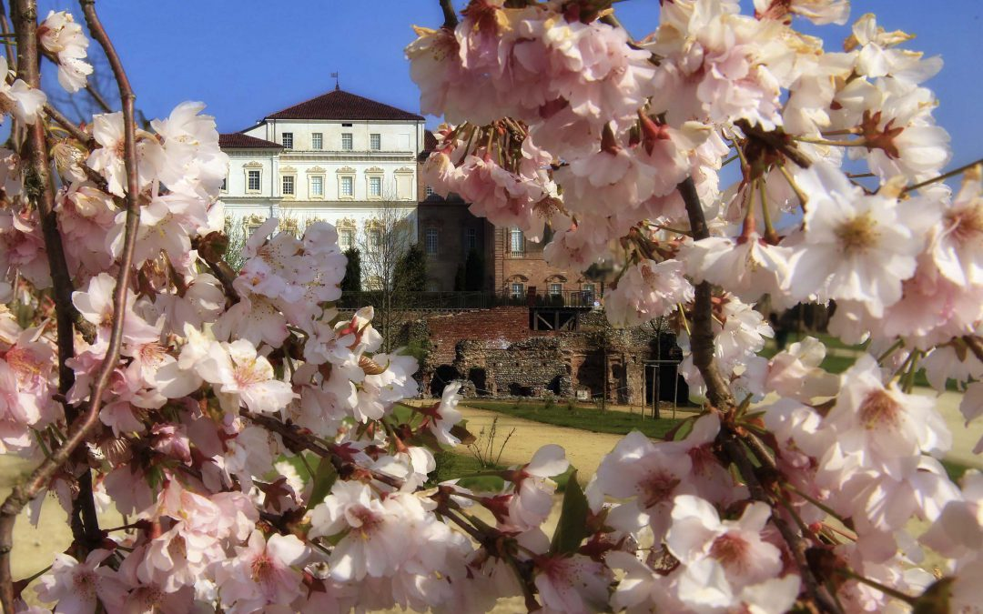 """I Giardini della Venaria vincono il premio: """"Il parco più bello d'Italia"""""""