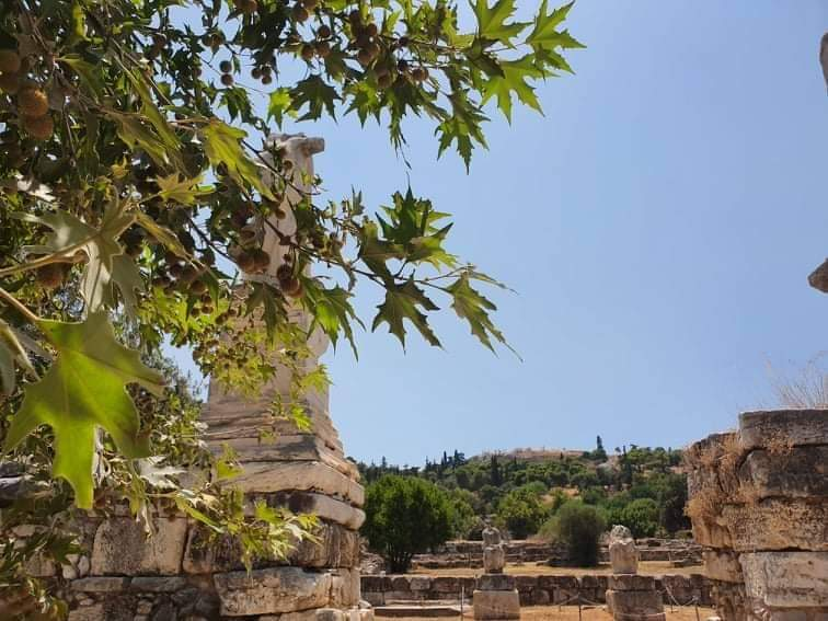 Una passeggiata nell'agorà di Atene
